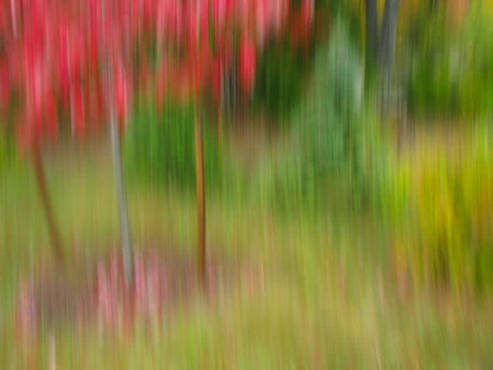 nh_kancamangus_blur2