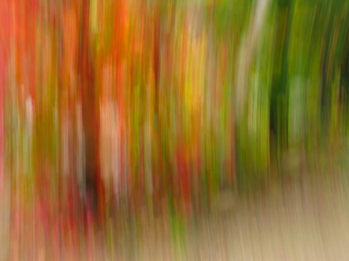 nh_kancamangus_blur3