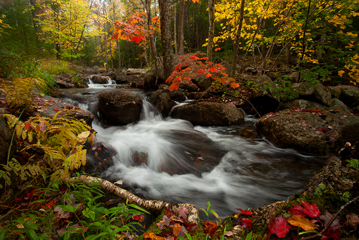 10-14-11jordan pond stream2