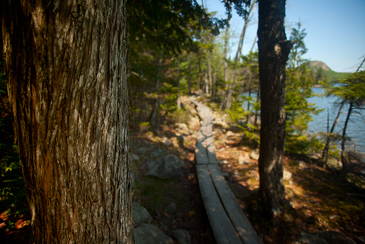 Jordan Pond Trail