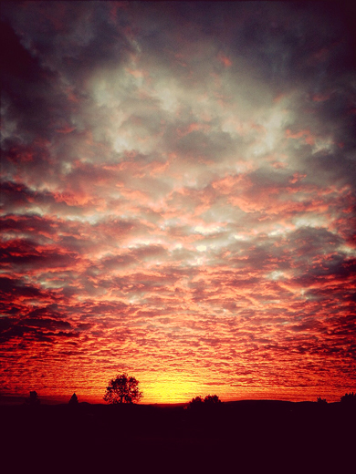 9-27-13 sunrise3