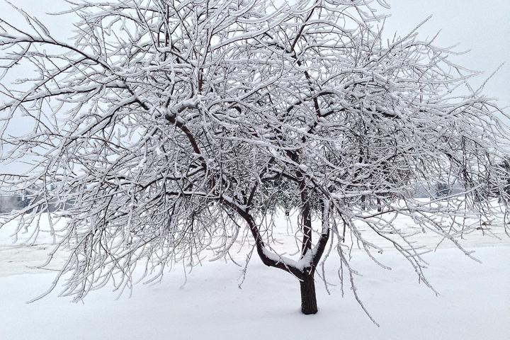 2013-12-29 ice2