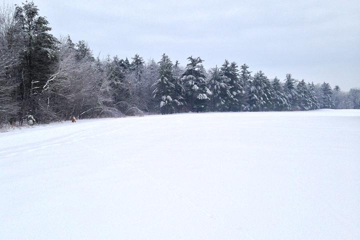 2013-12-29 ice3