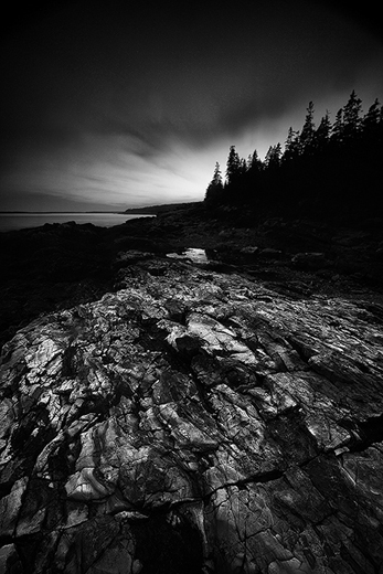 BH Otter Point2 BW